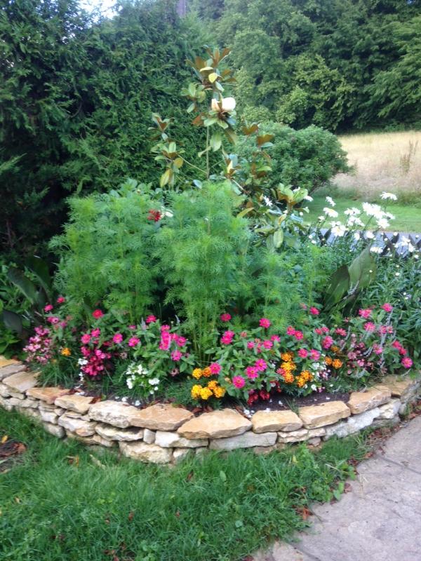 Ma fierté au jardin